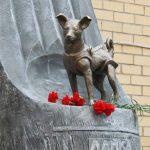 Laïka, le chien de l'espace venu de l'URSS