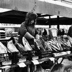 Perches, sandres, brochets et autres poissons blancs se partagent les étals des marchés par moins 20°C