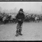 Photos de Russie : éleveur de rennes