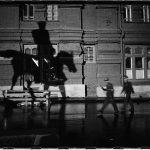 Photos de Russie : ombre et chevaux